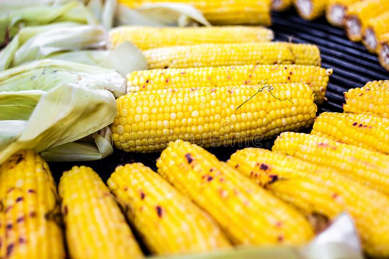 Closeup delicious BBQ grilled Mexican corn on the cob, vegetable food background. Barbecued roasted on the hot stove fresh tasty s. Weet corn. Ready to Eat royalty free stock image