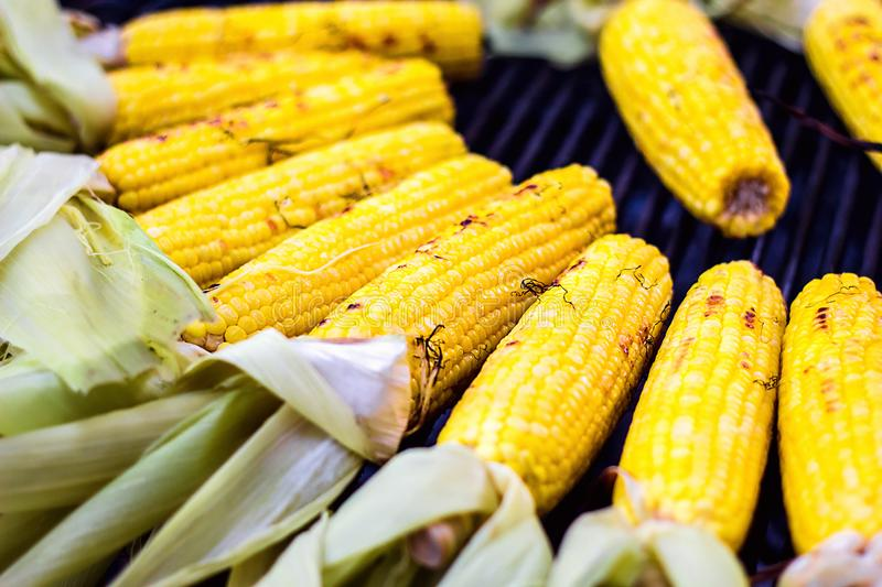 Closeup delicious BBQ grilled Mexican corn on the cob, vegetable food background. Barbecued roasted on the hot stove fresh tasty s. Weet corn. Ready to Eat stock image