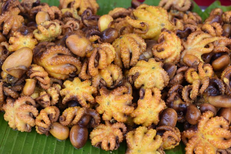 Closeup of delicious octopus on a local street food market chatuchak market in Thailand, Asia. Closeup of delicious octopus on a local street food market royalty free stock photos