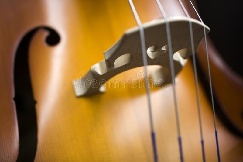 Upright bass. Closeup detail view at the upright bass stock image