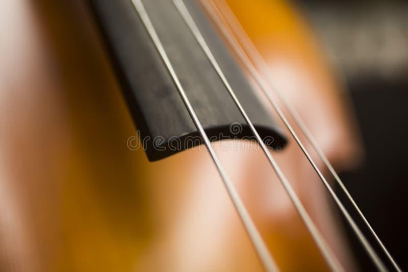 Upright bass. Closeup detail view at the upright bass stock photos
