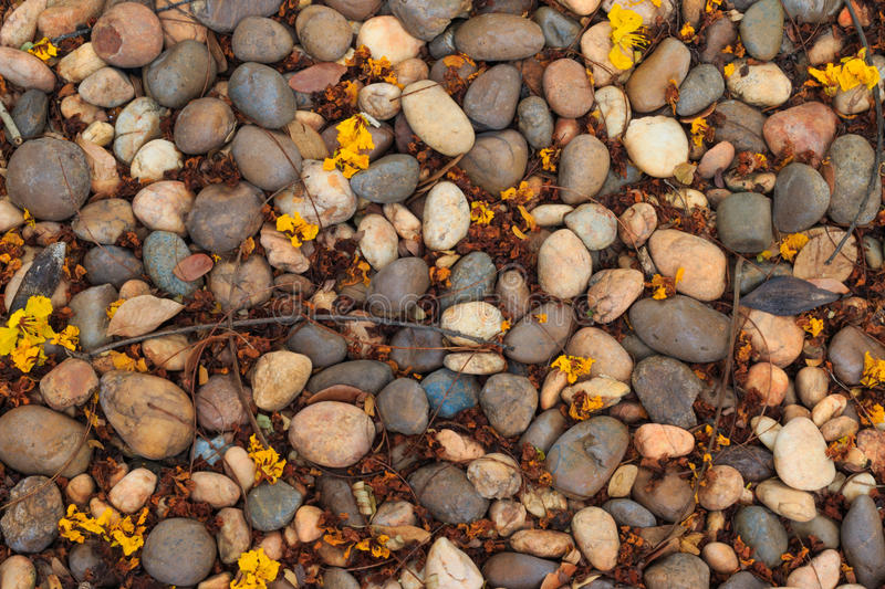 Closeup dirty stone floor with dried leaves texture background. stock photography
