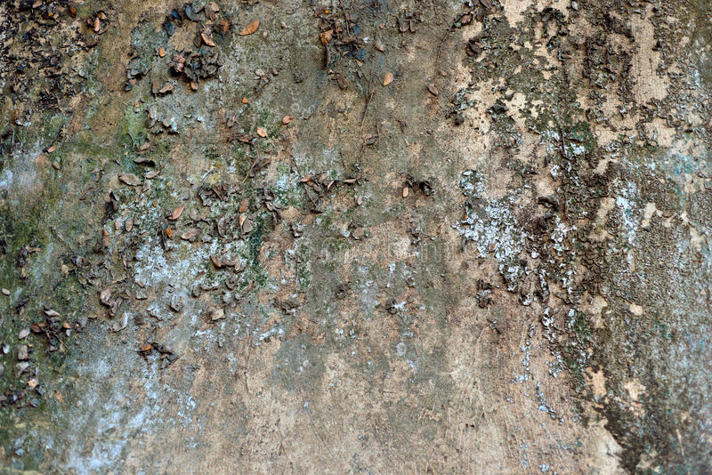 Closeup dirty wall textures. Close up dirty wall textures royalty free stock images