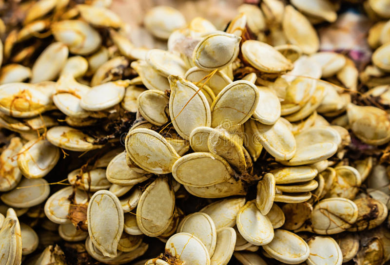 Closeup of dried pumpkin seeds for sowing. Background texture. C stock images