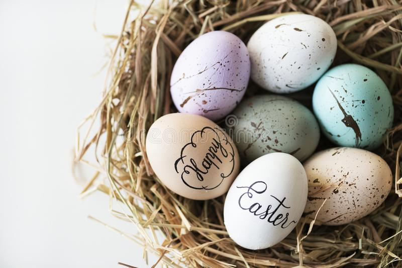 Closeup of easter eggs in nest royalty free stock images