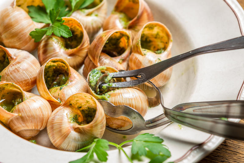 Closeup of eating the fried snails with garlic butter royalty free stock photography
