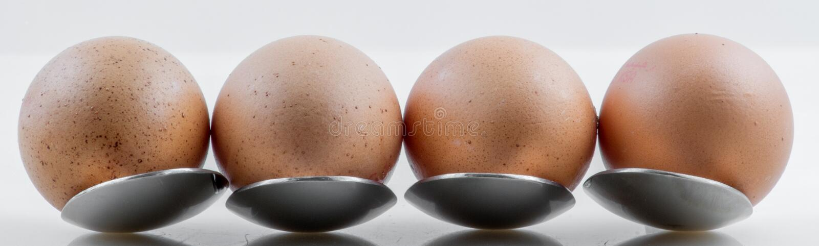 Closeup for eggs on metal spoon stock image