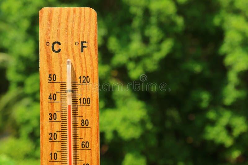 Closeup en trätermometer mot grön lövverk som visar hög temperatur fotografering för bildbyråer