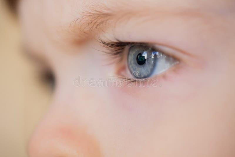Closeup of eyes of a blue-eyed child with long eyelashes stock images