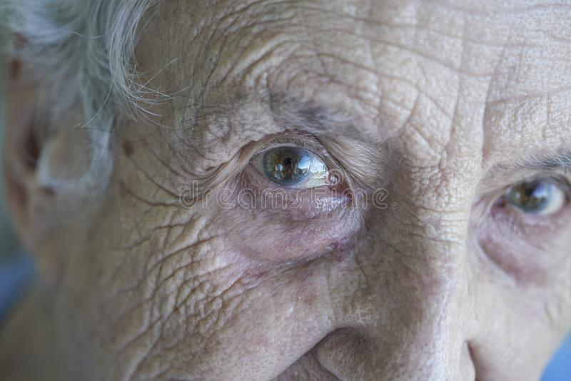 Download Closeup Eyes Of A Senior Person Stock Image - Image of adult, elderly: 102152797