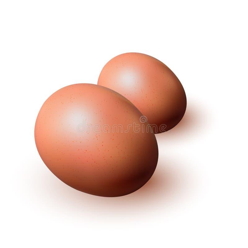 Closeup för bruna ägg på vit bakgrund stock illustrationer