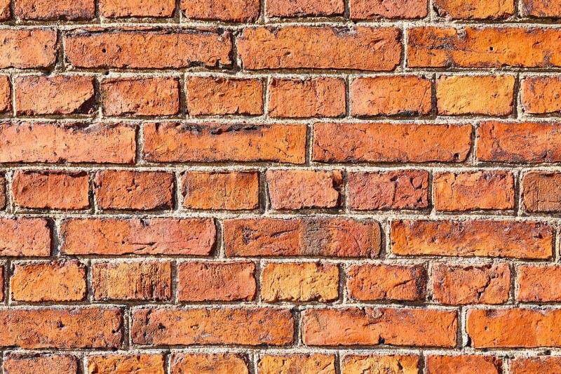 Closeup för tegelstenvägg royaltyfri fotografi