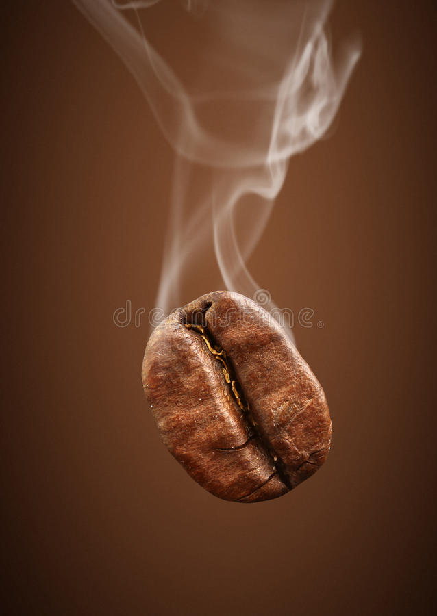 Closeup falling coffee bean with smoke on brown background royalty free stock photos