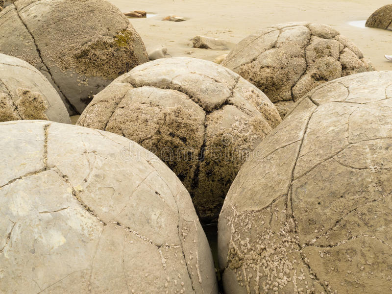 Closeup of famous spherical Moeraki Boulders, NZ. Close-up of famous New Zealand tourist attraction of Moeraki Boulders on East Coast of South Island, Otago, NZ stock photo