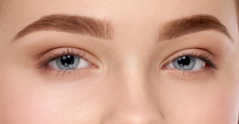 Closeup of female blue eyes and perfect eyebrows royalty free stock photos