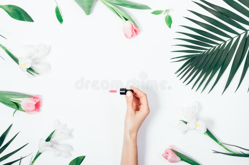 Closeup female hand holding a pipette royalty free stock photo