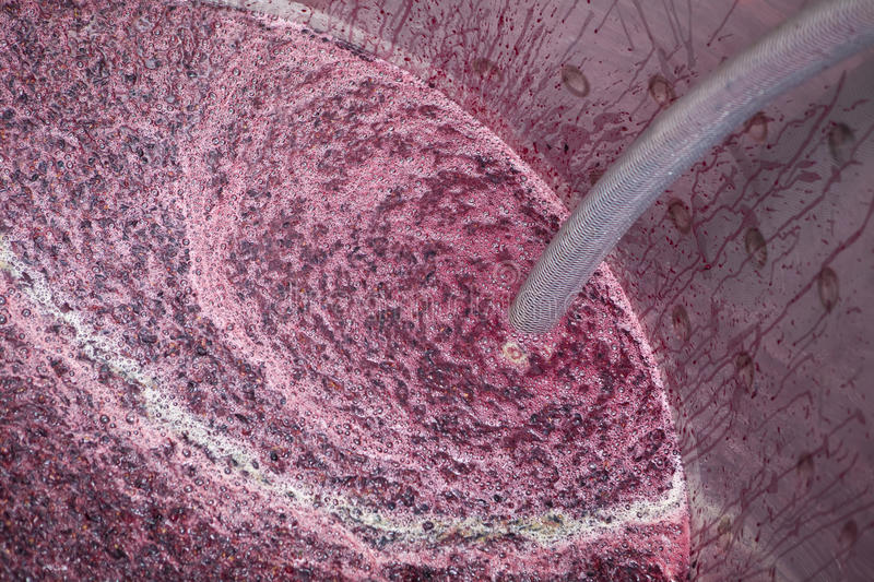 Closeup of Fermenting vat in a winery stock photography