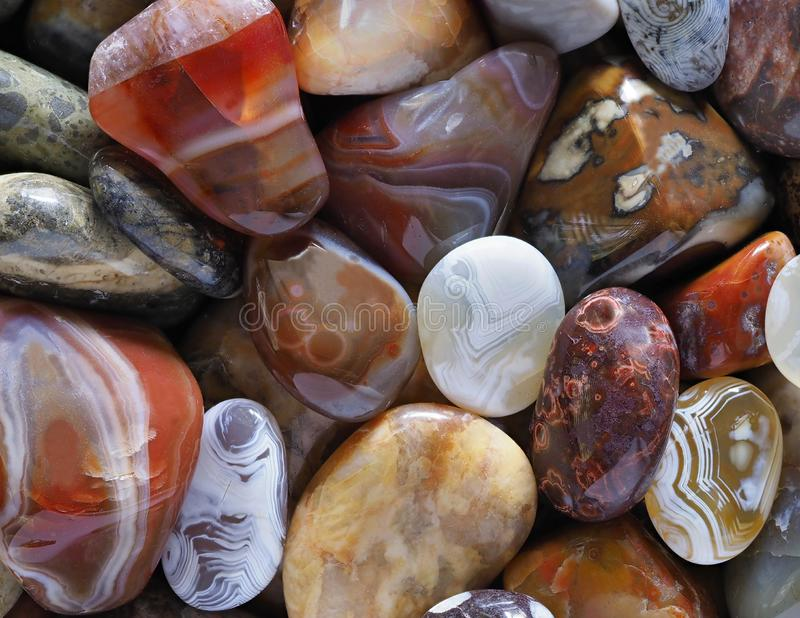 Closeup Focus Stacked Image Tumbled or Polished Stones to include Agates, Beach Agates and Petrified Wood royalty free stock images