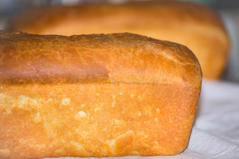 Closeup of Fresh Baked Homemade Bread Loaf stock photography