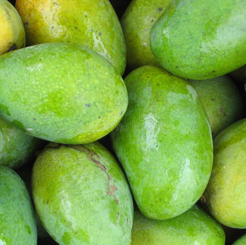 closeup fresh green mangoes royaltyfria bilder