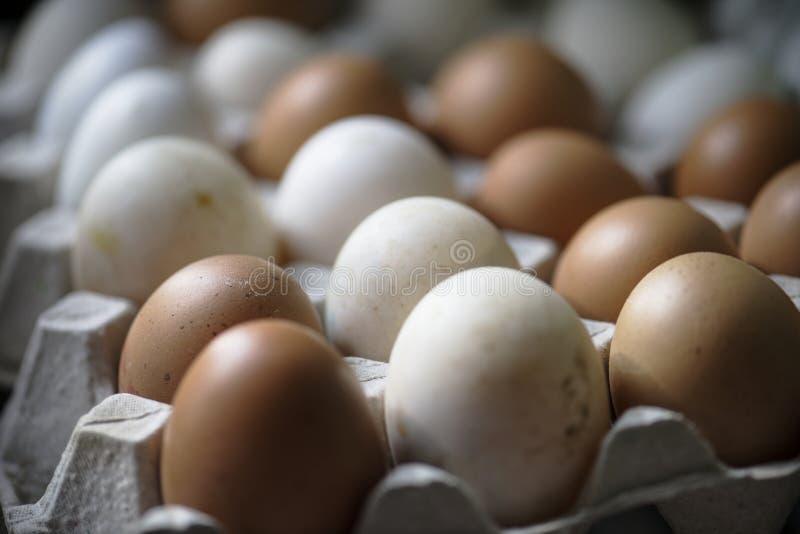 Closeup of fresh organic eggs stock photography