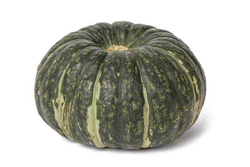 Closeup of fresh sweet pumpkin royalty free stock images