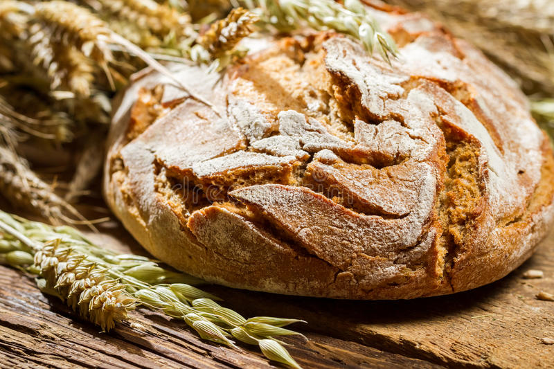 Closeup of freshly baked country bread royalty free stock photos
