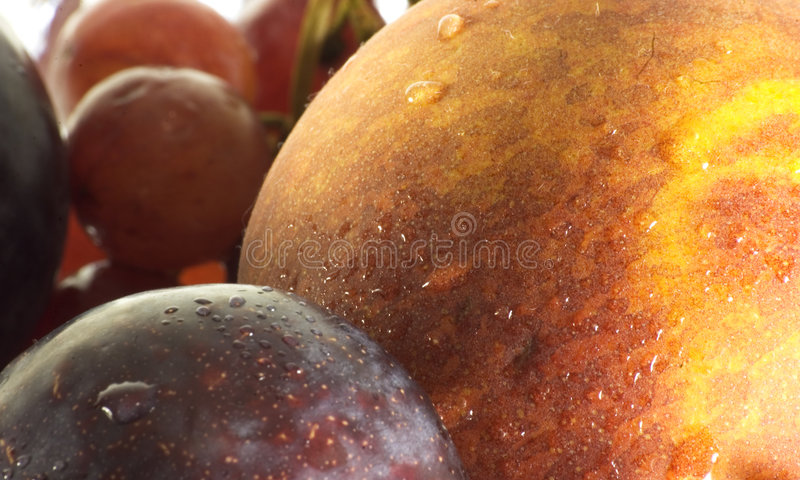 Download Closeup fruit stock photo. Image of fresh, plums, background - 23880