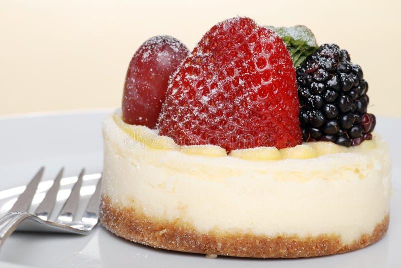 Closeup fruit cheesecake