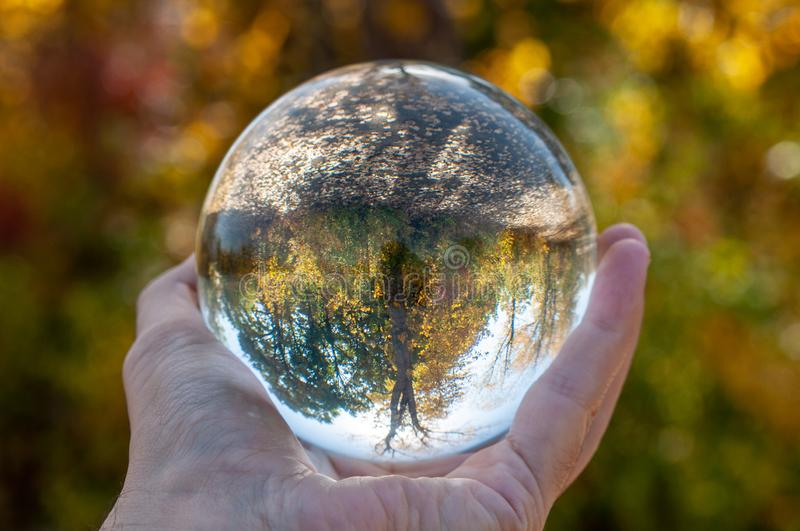 Closeup of a glass ball. Held up by a human hand reflecting the wooded area inside the sphere stock photo