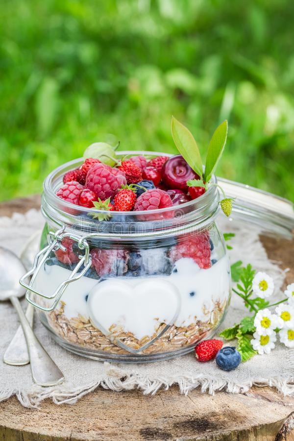 Closeup of granola with berry fruits and yogurt in garden royalty free stock photography