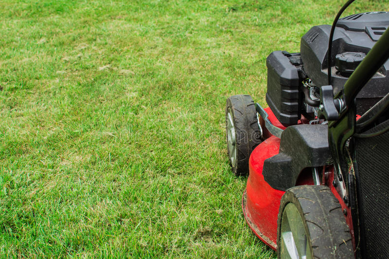 Closeup of grassmower mowing the grass.  royalty free stock photo
