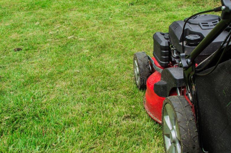 Closeup of grassmower mowing the grass.  stock image