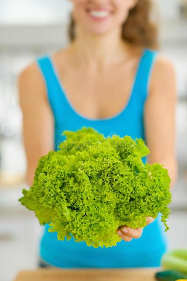 Closeup on green salad in hand of young woman stock photography