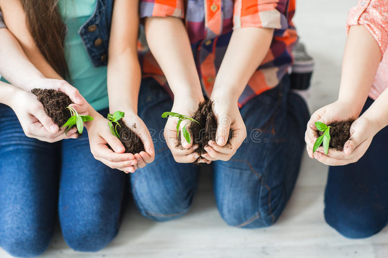 Closeup of the hands of children holding the earth with plants stock photos