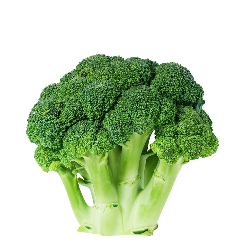 Closeup of a head of broccoli showing individual florets on white background. stock image