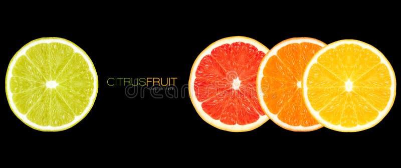 Closeup of Healthy Fresh Citrus Fruits. Clean Eating Concept. Clean Eating. Closeup of lemon, orange, grapefruit and lime slices. Healthy fresh citrus fruits stock image