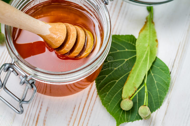 Closeup of honey dipper and lime leaves stock images