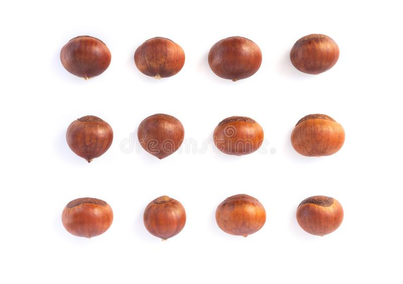 Closeup horse chestnuts isolated on white background,  healthy food concept. Closeup horse chestnuts isolated on white background,  healthy food royalty free stock images