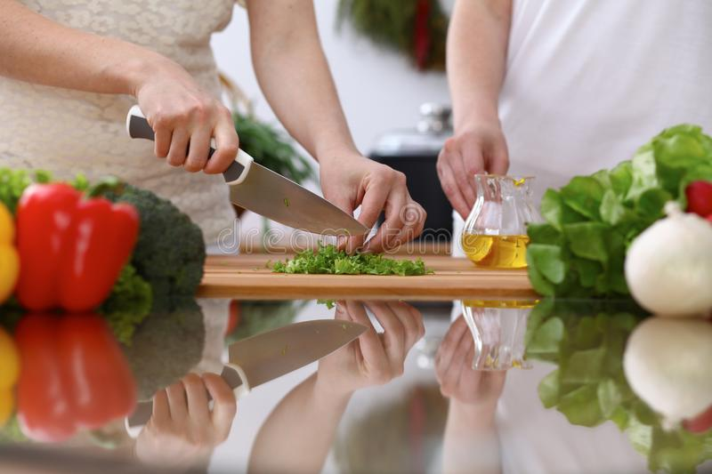 Closeup of human hands cooking in kitchen. Mother and daughter or two female cutting green salad or herbs. Healthy meal. Vegetarian food and lifestyle concepts stock photography