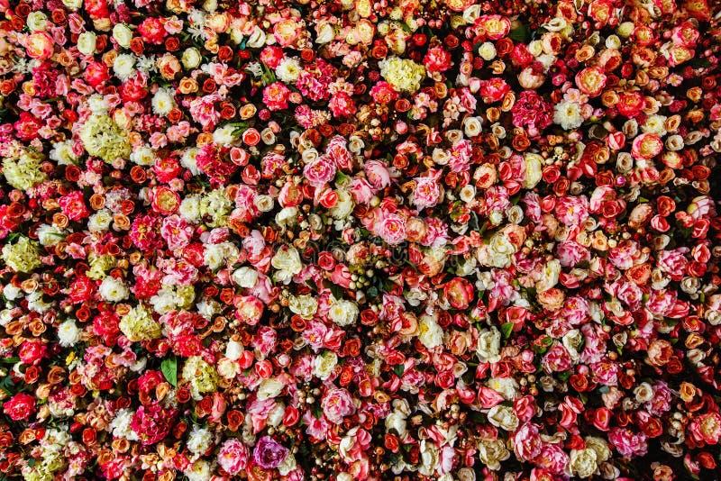 Closeup image of beautiful flowers wall background stock photo