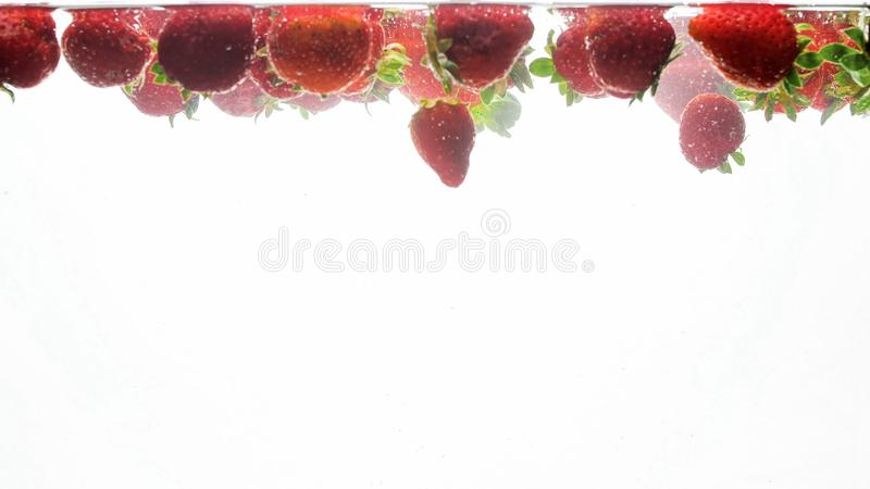 Closeup photo of lots of fresh ripe strawberries floating in clear water with air bubbles against white background royalty free stock photo