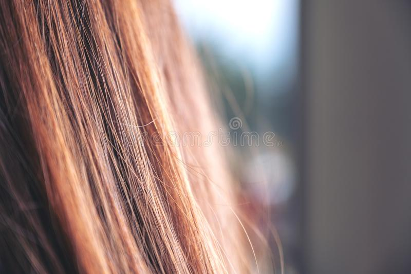 A woman with brown hair. Closeup image of a woman with brown hair royalty free stock photography