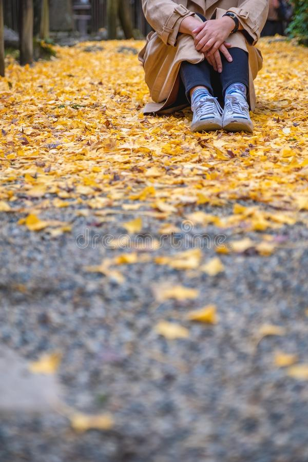 A woman sitting alone on the street with yellow ginko leaves cover in autumn. Closeup image of a woman sitting alone on the street with yellow ginko leaves cover stock image