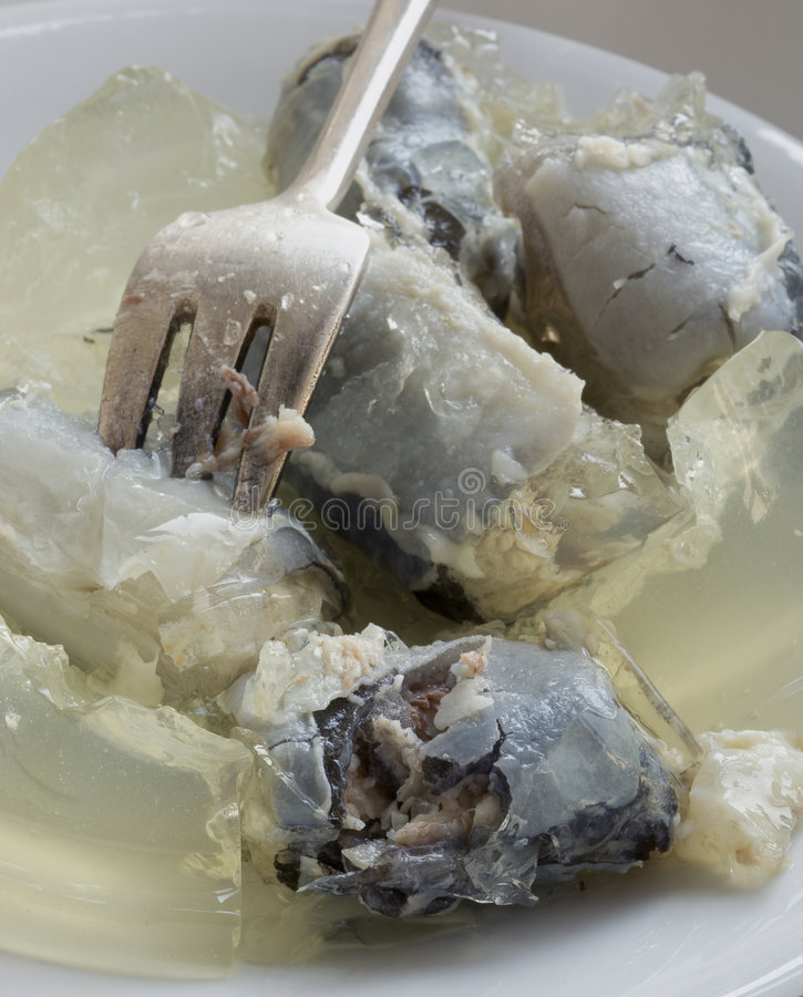 Closeup jellied eels. Macro close-up of jellied eels, traditional snack of cockney East End Londoners royalty free stock photo
