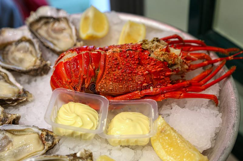 Dish of fresh seafood, lobster with oysters with lemon and sauce royalty free stock image