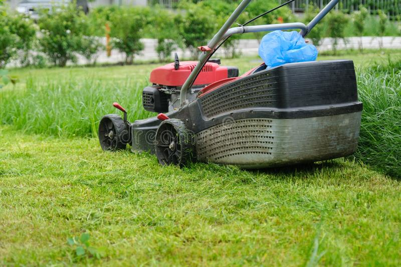 Closeup of lawn mower mowing green grass, city courtyard of an apartment building.  royalty free stock photography