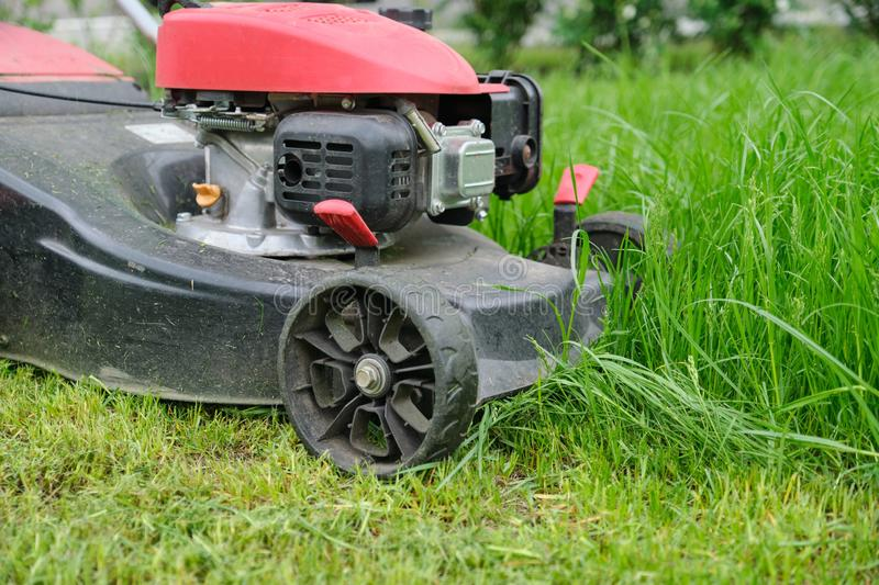 Closeup of lawn mower mowing green grass, city courtyard of an apartment building.  stock images