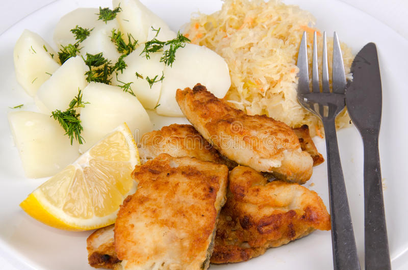 Download Closeup For Lunch Set With Cod Fish Stock Image - Image: 27680631