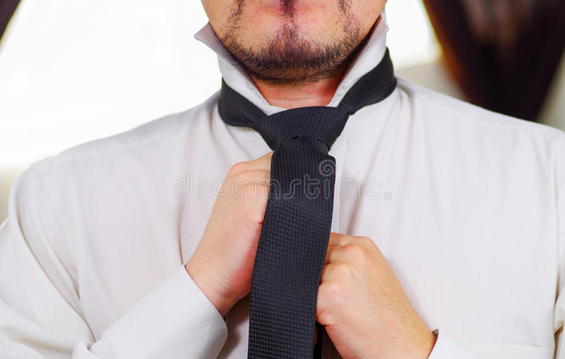Closeup man's chest wearing white shirt, tying tie using hands, face partly visible, men getting dressed concept stock image